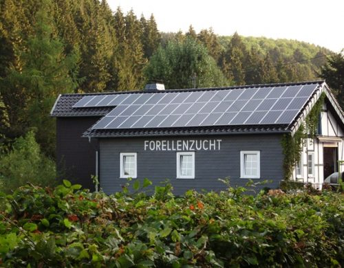 iQma_energy_Photovoltaik_Solar_Forellenzucht